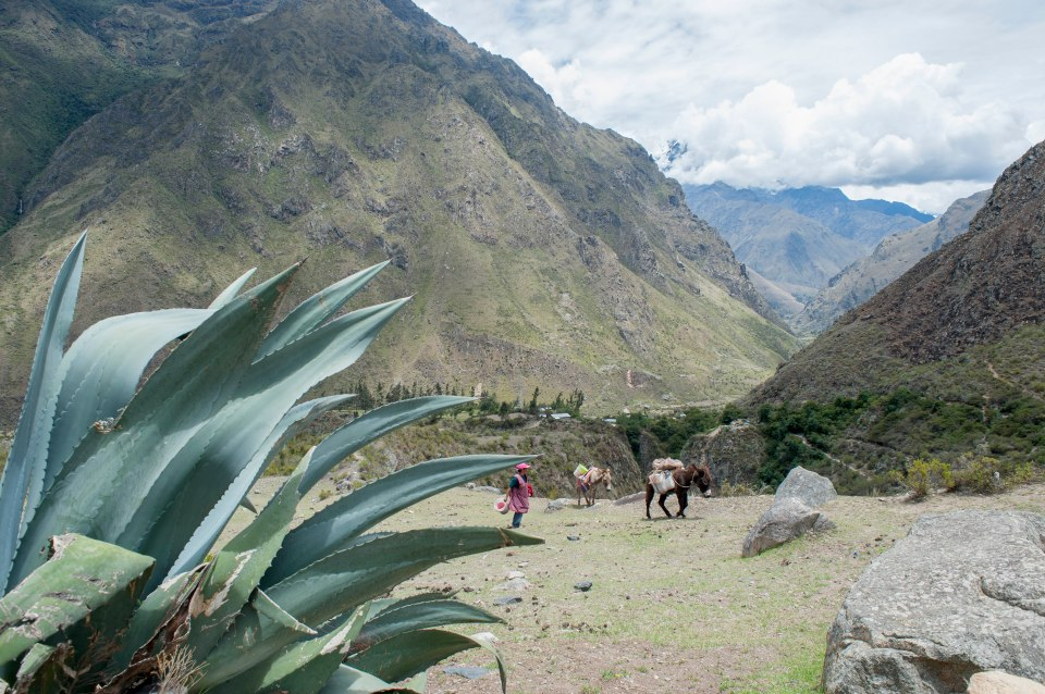 Inka Trail- Day 1-19