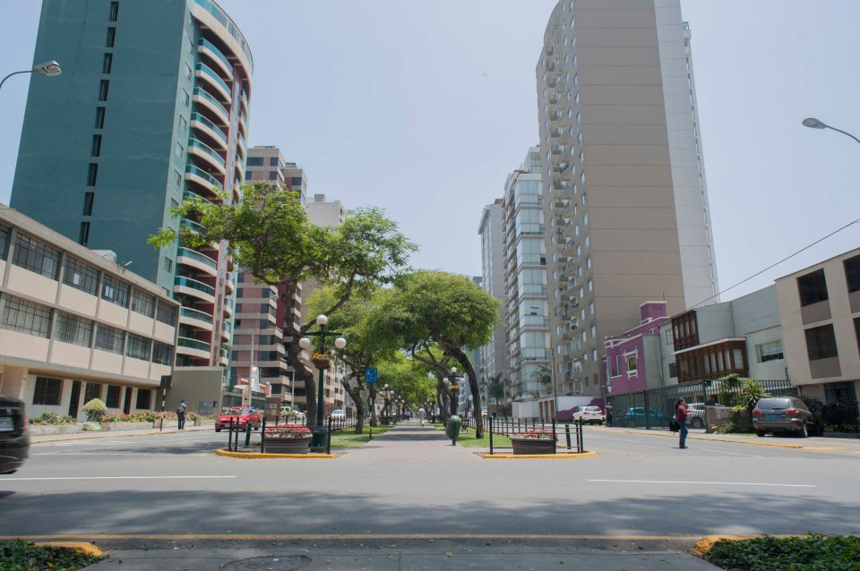 Lima-8